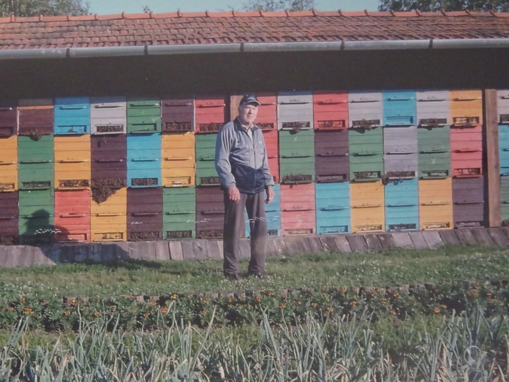 Čebelar Nemecz Jožef pred svojim čebelnjakom