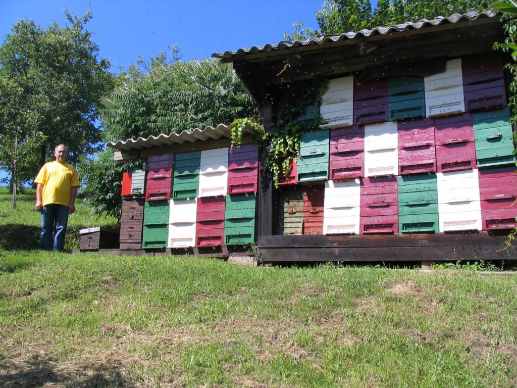 Čebelarstvo Časar Marjan